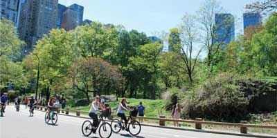 Central Park Sightseeing <br>Bike Tours & Rentals
